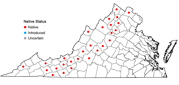 Locations ofHeracleum maximum Bartr. in Virginia