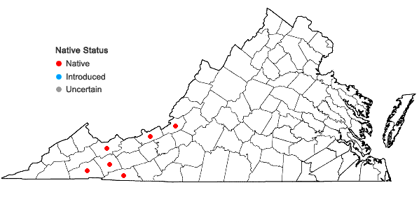 Locations ofHerbertus tenuis (A. Evans) H.A. Mill. & E.B. Bohrer in Virginia