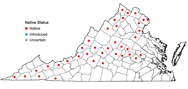 Locations ofHeteranthera dubia (Jacquin) MacMillan in Virginia