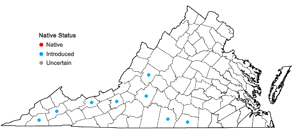 Locations ofHeterotheca camporum (Greene) Shinners var. glandulissima Semple in Virginia