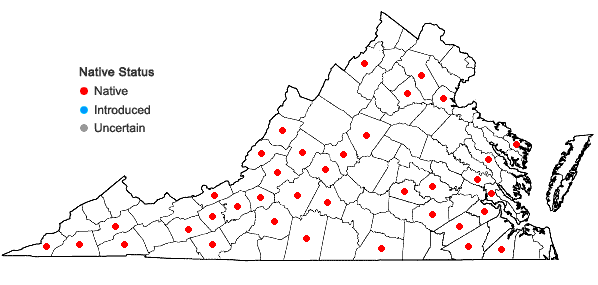 Locations ofHexalectris spicata (Walter) Barnh. var. spicata in Virginia