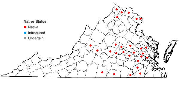 Locations ofHibiscus laevis Allioni in Virginia