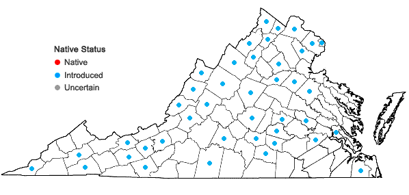 Locations ofHibiscus trionum L. in Virginia
