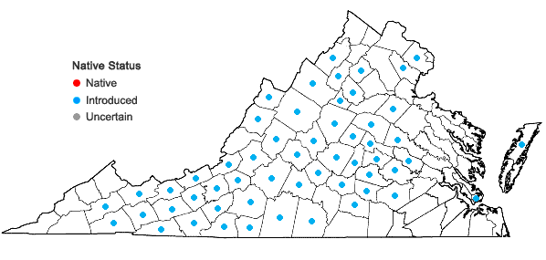 Locations ofHieracium pilosella L. in Virginia