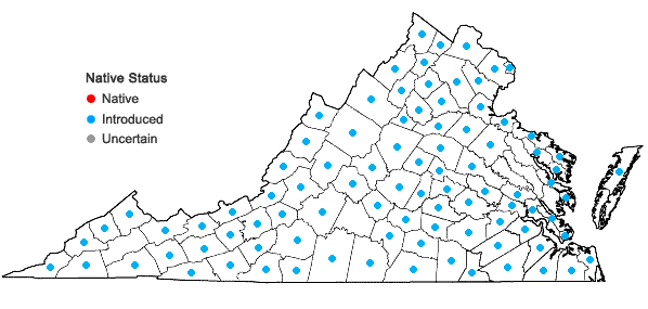 Locations ofHolcus lanatus L. in Virginia