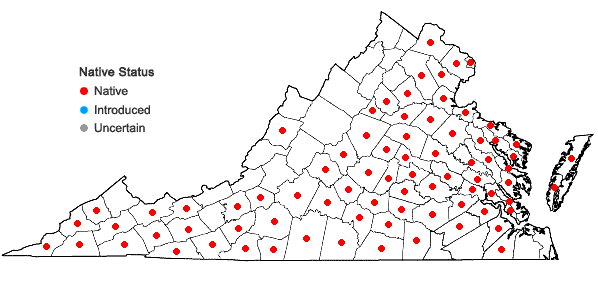Locations ofHoustonia purpurea L. var. purpurea in Virginia