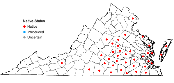 Locations ofHoustonia pusilla Schoepf in Virginia