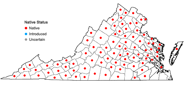 Locations ofHuperzia lucidula (Michx.) Trevisan in Virginia