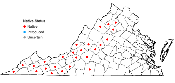 Locations ofHydatica petiolaris (Raf.) Small in Virginia