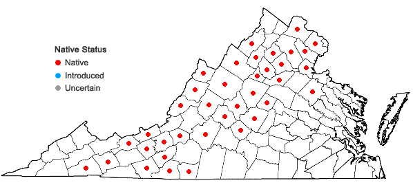Locations ofHydrocotyle americana L. in Virginia