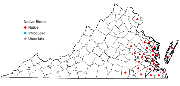 Locations ofHydrocotyle umbellata L. in Virginia