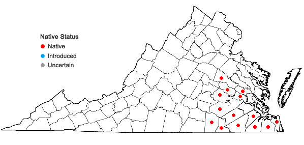 Locations ofHydrolea quadrivalvis Walt. in Virginia