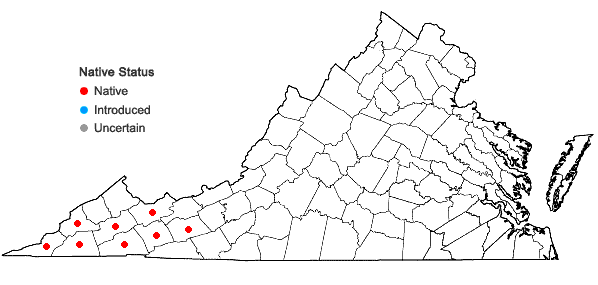 Locations ofHydrophyllum macrophyllum Nutt. in Virginia