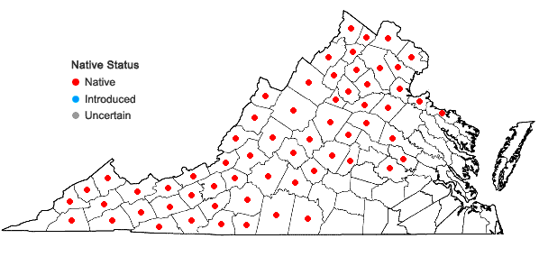 Locations ofHydrophyllum virginianum L. in Virginia