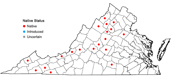 Locations ofHygrohypnum eugyrium (Schimp.) Loeske in Virginia