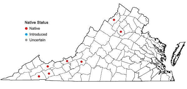 Locations ofHygrohypnum ochraceum (Turner ex Wilson) Loeske in Virginia