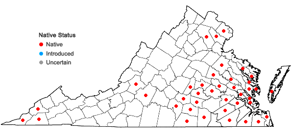Locations ofHylodesmum pauciflorum (Nutt.) H. Ohashi & R.R. Mill in Virginia