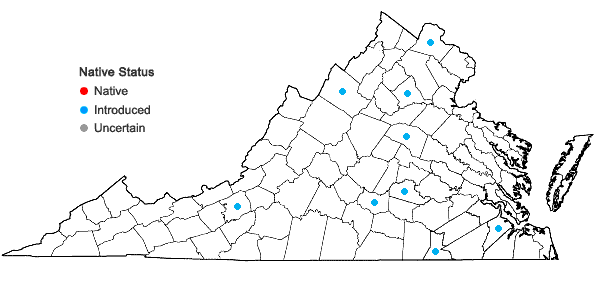 Locations ofHylotelephium erythrostictum (Miq.) H. Ohba in Virginia