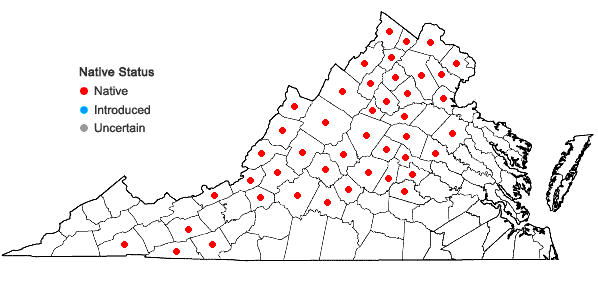 Locations ofHylotelephium telephioides (Michx.) H. Ohba in Virginia