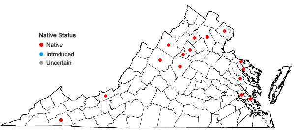 Locations ofHypnum cupressiforme Hedw. var. cupressiforme in Virginia
