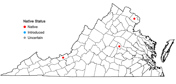 Locations ofHypnum cupressiforme var. filiforme Brid. in Virginia