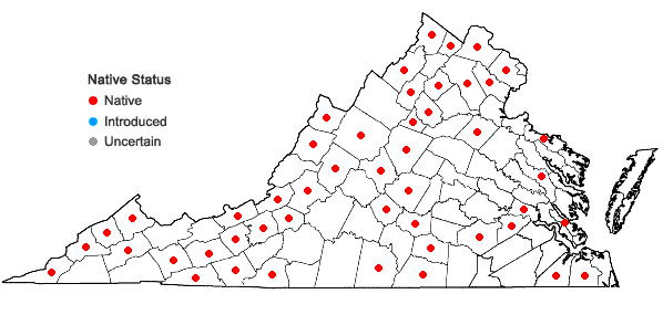Locations ofHypnum curvifolium Hedwig in Virginia