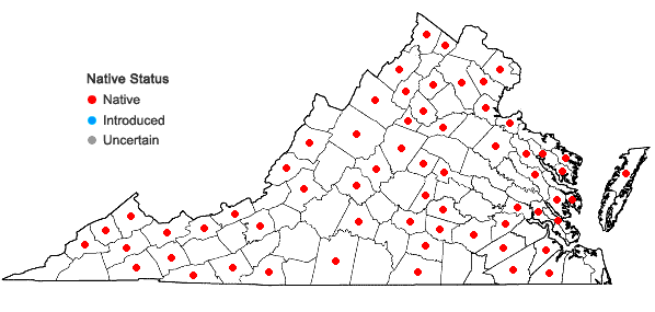 Locations ofHypnum imponens Hedwig in Virginia