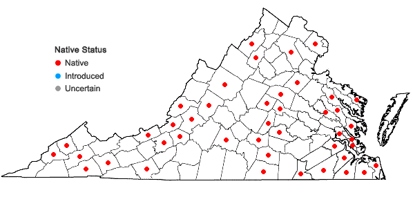 Locations ofHypnum lindbergii Mitt. in Virginia