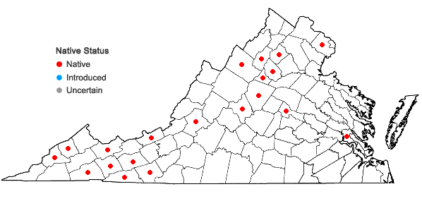 Locations ofHypnum pallescens (Hedw.) P. Beauv. in Virginia