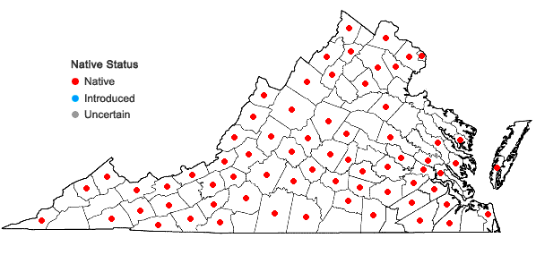 Locations ofIonactis linariifolia (L.) Greene in Virginia