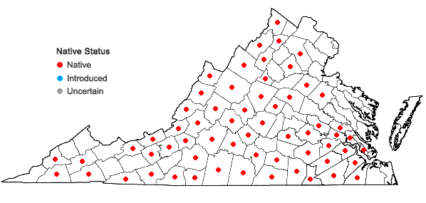 Locations ofIris verna L. in Virginia
