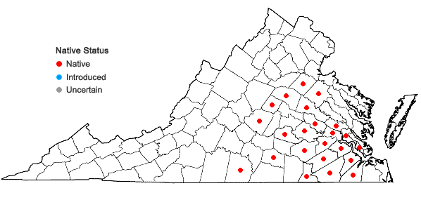 Locations ofIris verna L. var. verna in Virginia