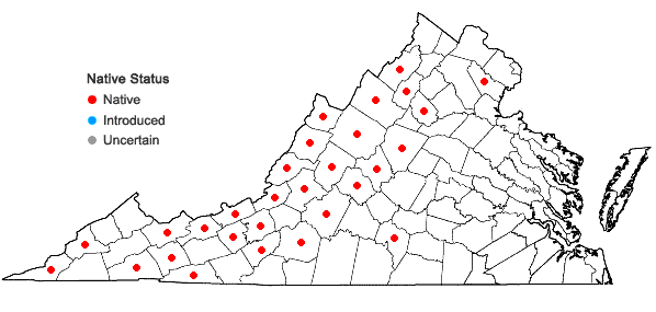Locations ofIsoetes valida (Engelm.) Clute in Virginia