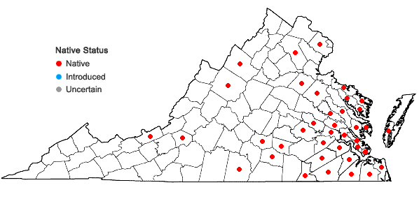 Locations ofIsopterygium tenerum (Sw.) Mitt. in Virginia