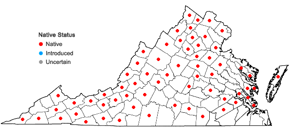Locations ofJuglans cinerea L. in Virginia