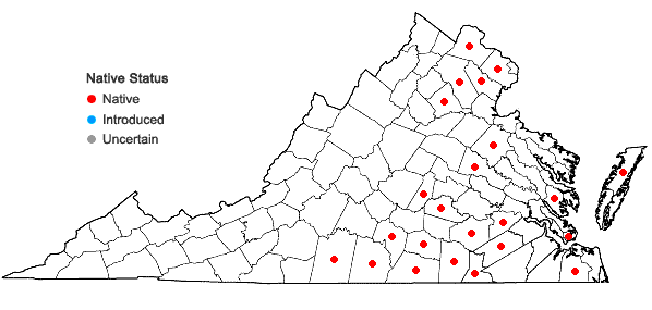 Locations ofJuncus brachycarpus Engelm. in Virginia