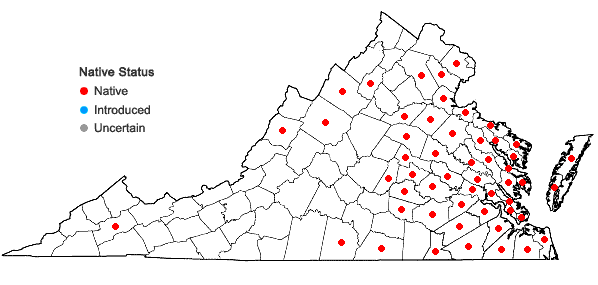 Locations ofJuncus canadensis J. Gay ex Laharpe in Virginia