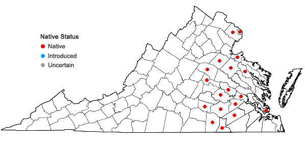 Locations ofJuncus longii Fern. in Virginia