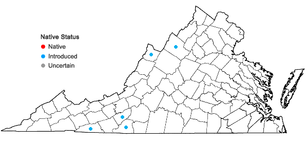 Locations ofJuniperus communis L. var. communis in Virginia