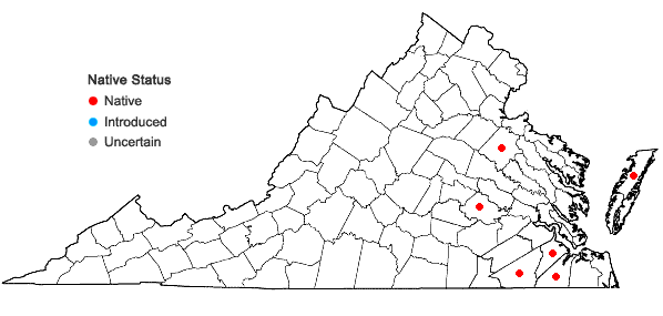 Locations ofKalmia angustifolia L. in Virginia