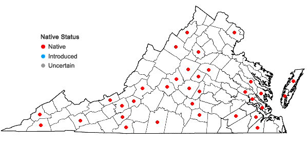 Locations ofKurzia sylvatica (A. Evans) Grolle in Virginia