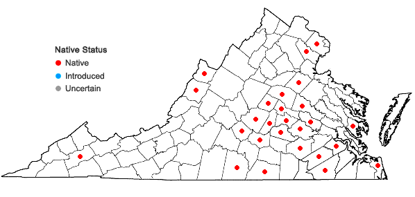 Locations ofLactuca hirsuta Muhl. ex Nutt. in Virginia