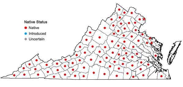 Locations ofLaportea canadensis (L.) Weddell in Virginia
