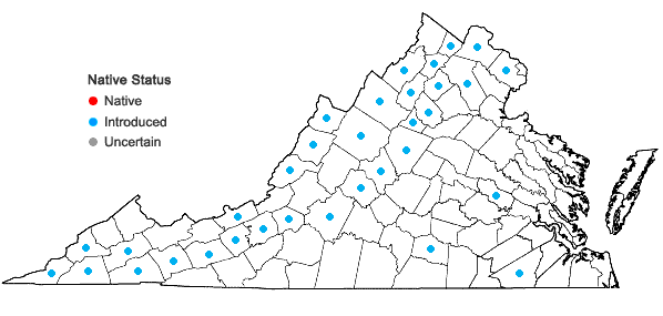 Locations ofLapsana communis L. in Virginia