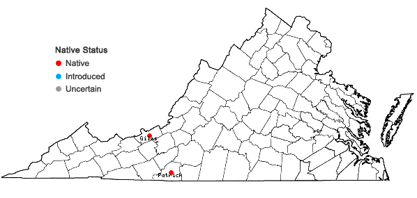 Locations ofLejeunea blomquistii R.M. Schuster in Virginia