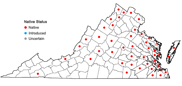 Locations ofLemna perpusilla Torr. in Virginia