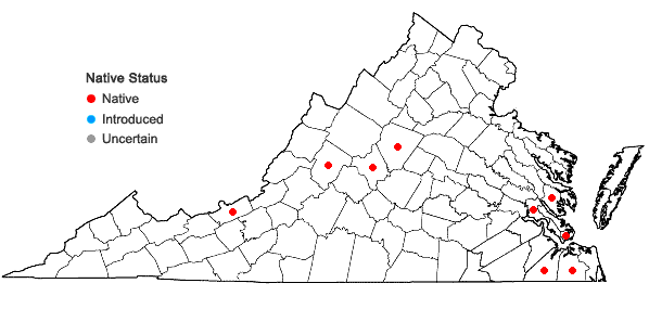 Locations ofLeptobryum pyriforme (Hedw.) Wilson in Virginia