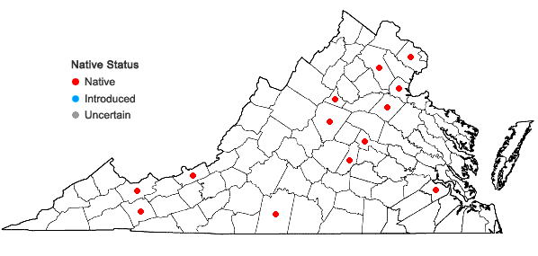 Locations ofLeskea obscura Hedwig in Virginia