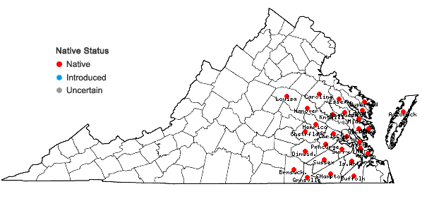 Locations ofLespedeza angustifolia (Pursh) Ell. in Virginia
