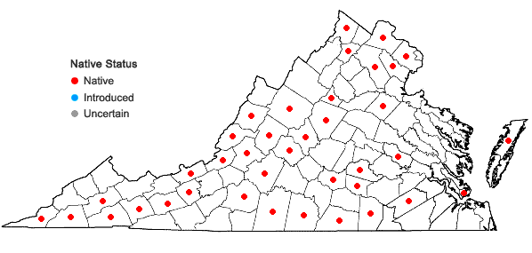 Locations ofLespedeza frutescens (L.) Ell. in Virginia